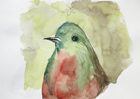 Bird water color painting