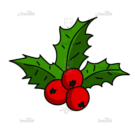Christmas holly with red berries vector isolated