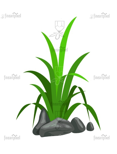 Grass and rocks clipart