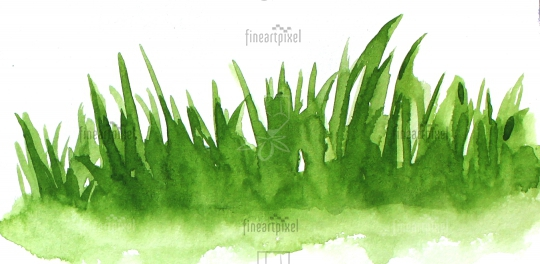 Grass water color banner frame