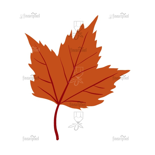 Red Maple tree leaf clip art.