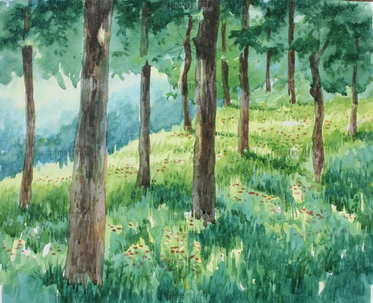 Trees background water color painting