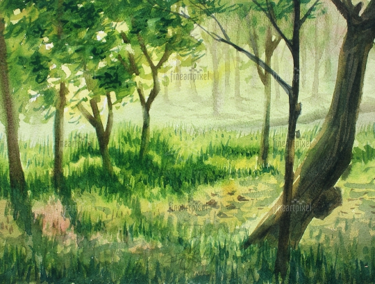 Water color forest trees